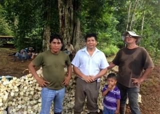 Proyecto Palmito Cabécar