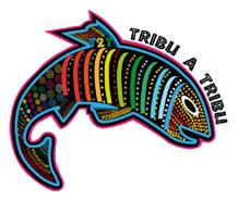 Tribu a Tribu